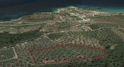Αγροτεμάχια 18.629τ.μ. πρoς αγορά-Σιθωνία » Νικήτη