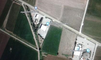 Αγροτεμάχια 13.492τ.μ. πρoς αγορά-Λαμία » Σταυρός