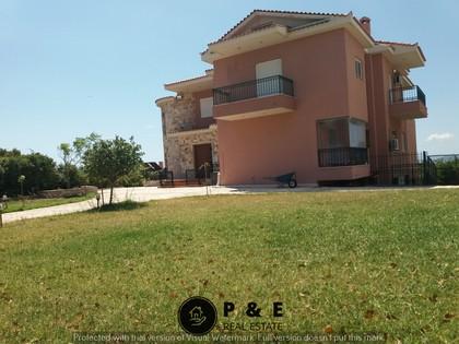 Μονοκατοικία 500τ.μ. πρoς αγορά-Αρτέμιδα (λούτσα) » Κατασκηνώσεις