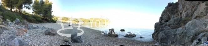 Αγροτεμάχια 8.163τ.μ. πρoς αγορά-Παλλήνη » Αγία παρασκευή