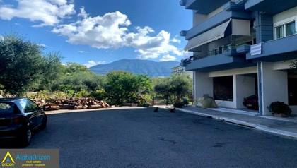 Οικόπεδο 266τ.μ. πρoς αγορά-Καλαμάτα » Κέντρο
