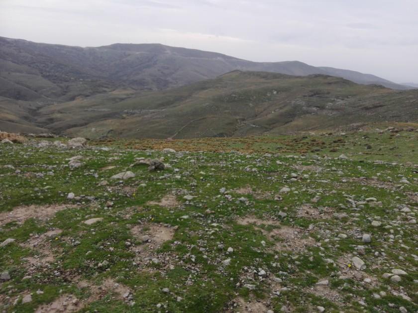 Οικόπεδο 100.000τ.μ. πρoς ενοικίαση-Λέσβος - ερεσός