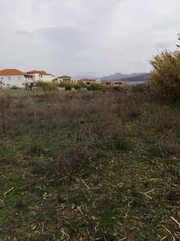 Οικόπεδο 4.000τ.μ. πρoς αγορά-Λέσβος - ερεσός