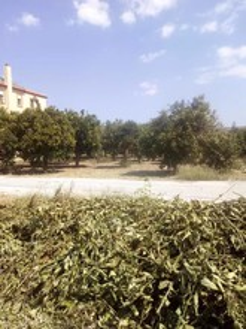 Οικόπεδο 661τ.μ. πρoς αγορά-Άρτα » Κεραμάτες