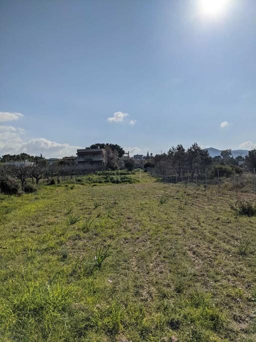 Οικόπεδο 1.740τ.μ. πρoς αγορά-Αίγινα » Κυψέλη