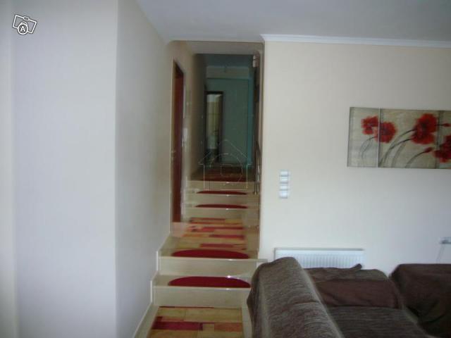 Μονοκατοικία 200τ.μ. πρoς αγορά-Πασσαρώνα » Βουνοπλαγιά