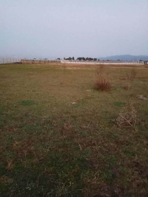Αγροτεμάχια 20.000-200.000τ.μ. πρoς ζήτηση-Βουπρασία