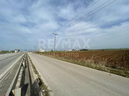Αγροτεμάχια 38.000τ.μ. πρoς αγορά-Λάρισα » Κέντρο