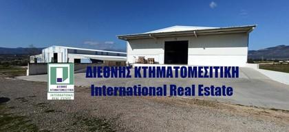 Αποθήκη 6.118τ.μ. πρoς ενοικίαση-Μέγαρα » Κέντρο