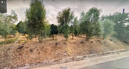 Οικόπεδο 2.500τ.μ. πρoς αγορά-Θέρισος » Αγιά