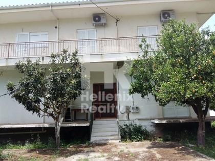 Διαμέρισμα 91τ.μ. πρoς αγορά-Χάλκεια » Γαλατάς