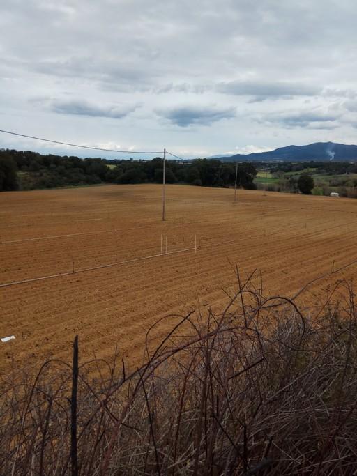 Αγροτεμάχια 20.000-500.000τ.μ. πρoς ζήτηση-Λάρισσος