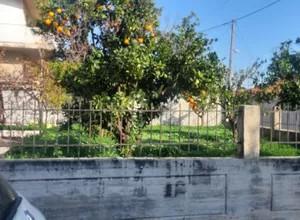 Μονοκατοικία 50τ.μ. πρoς ενοικίαση-Ασίνη » Κέντρο