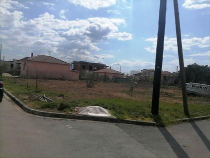 Οικόπεδο 1.000τ.μ. πρoς αγορά-Δράμα » Μαυρόβάτος