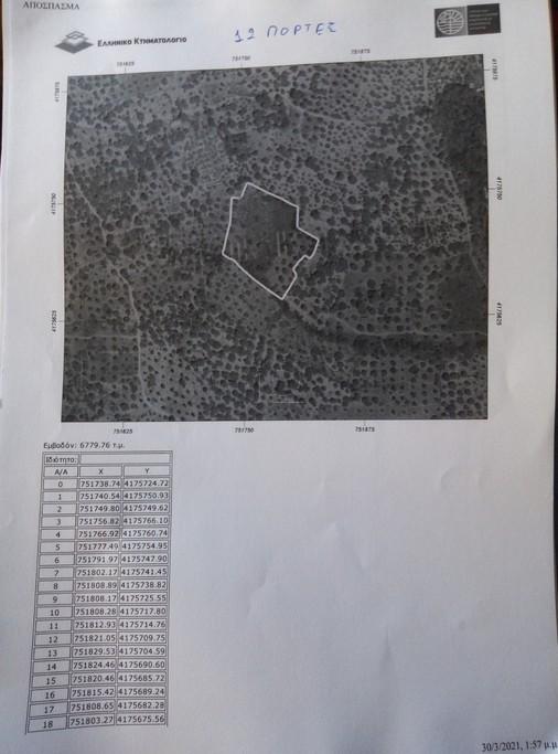 Αγροτεμάχια 4.500τ.μ. πρoς αγορά-Σάμος » Πυθαγόρειο