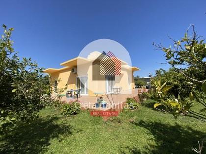 Μονοκατοικία 120τ.μ. πρoς αγορά-Θέρισος » Αγιά