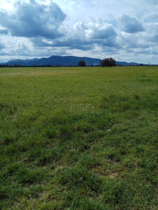 Αγροτεμάχια 10.000-200.000τ.μ. πρoς ζήτηση-Βουπρασία