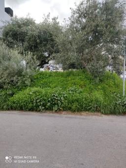 Οικόπεδο 260τ.μ. πρoς αγορά-Ηράκλειο κρήτης » Μεσαμπελιές