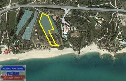 Αγροτεμάχια 5.063τ.μ. πρoς αγορά-Ελευθερές » Παραλία ελαιοχωρίου