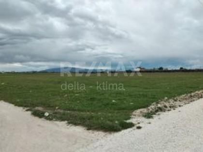 Αγροτεμάχια 5.000τ.μ. πρoς αγορά-Λάρισα » Τούμπα