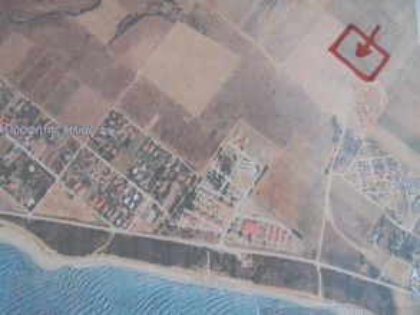 Αγροτεμάχια 11.500τ.μ. πρoς αγορά-Μαρώνεια » Πλατανίτης