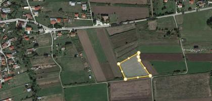 Αγροτεμάχια 6.500τ.μ. πρoς αγορά-Φαλώρεια » Ρόγκια