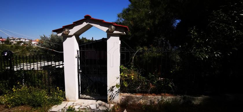 Μονοκατοικία 95τ.μ. πρoς αγορά-Οινόφυτα » Δήλεσι