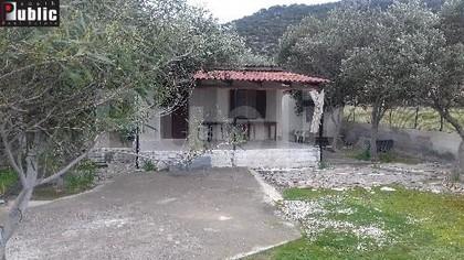 Μονοκατοικία 60τ.μ. πρoς αγορά-Θίσβη » Κέντρο