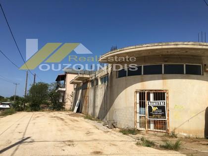 Οικόπεδο 450τ.μ. για αγορά-Αλεξανδρούπολη » Απαλός