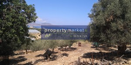 Land plot 10.222sqm for sale-Lappa » Episkopi