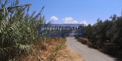 Land plot 5.000sqm for sale-Lappa » Episkopi
